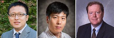 Minghao Li, Wendong Zhang, Dermot Hayes