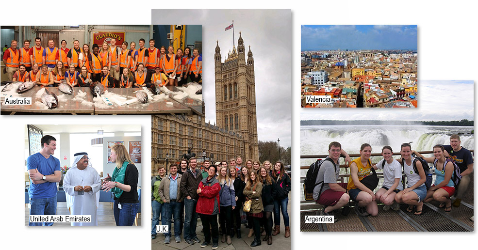 Department of Economics Study Abroad