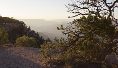 Air pollution in Grand Canyon park